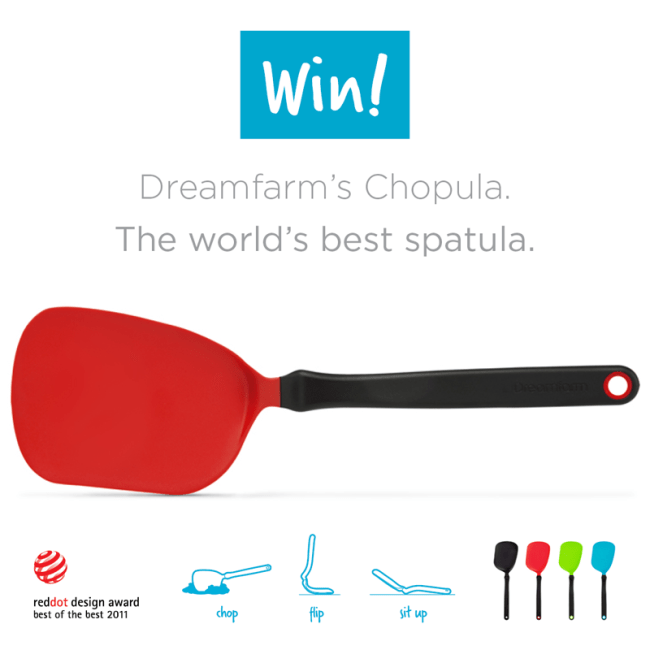 Dreamfarm Kitchen Tools Giveaway on Life Currents