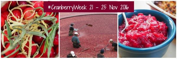 Cranberry Rosemary Cornbread for Cranberry Week