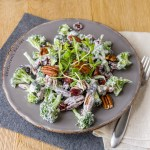 Cranberry Pecan Broccoli Salad is a great salad that you can make ahead & take to potlucks and family gatherings; it's filled with veggies and super yummy!