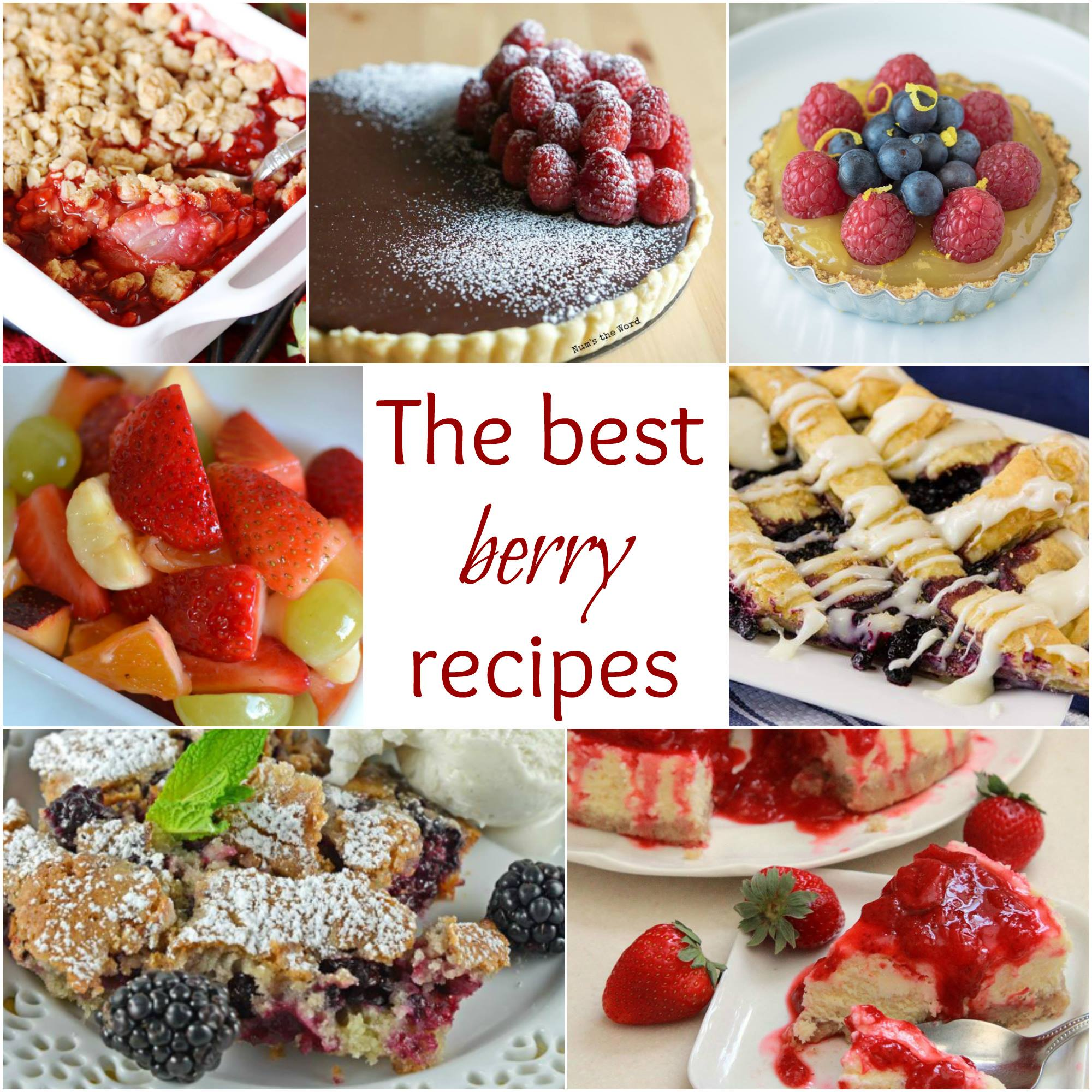 The Best Berry Recipes - a collection of yummy greats!