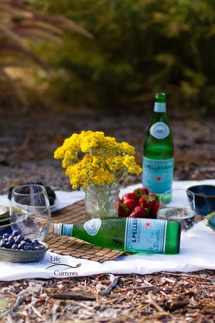 Basil Lime Sparkling Green Tea is just the thing to refresh and make you happy on a warm summer day. Take it on a picnic.
