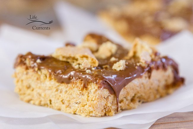 S'mores Krispie Treats Recipe - the perfect easy summer treat that you can make year-round