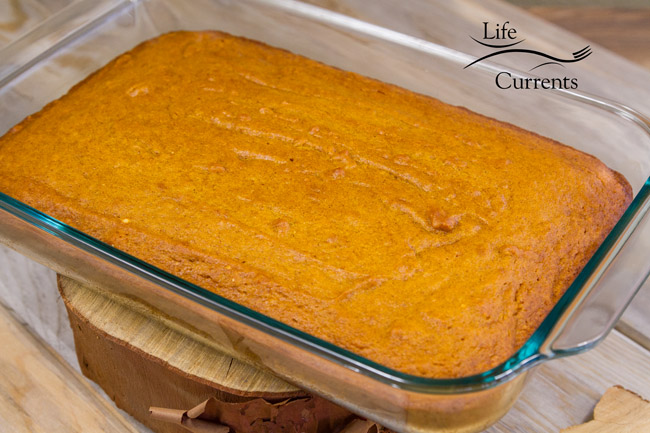 Pumpkin Spice Cake with Apple Butter Cream Cheese Frosting - cake, no frosting