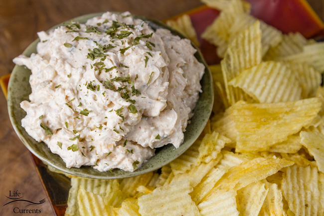 Onion Soup Mix Dip from Scratch - chips and dip served together in a classic style