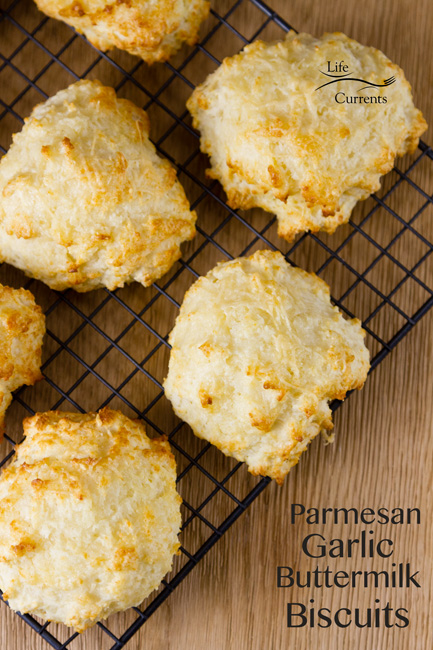 Parmesan Garlic Buttermilk Biscuits from Scratch - top down view with text explaining the recipe