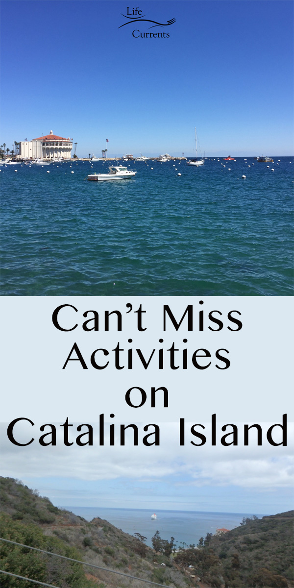 Can't Miss Activities on Catalina Island - taken on one of the land tours from the top of the island