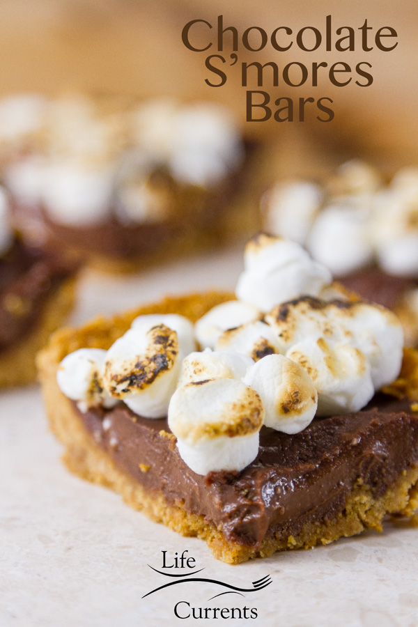 Chocolate S'mores Bars with a buttery crisp graham cracker crust, a soft luscious chocolate layer (that's enhanced with a little coffee), and all topped off with toasted marshmallows.