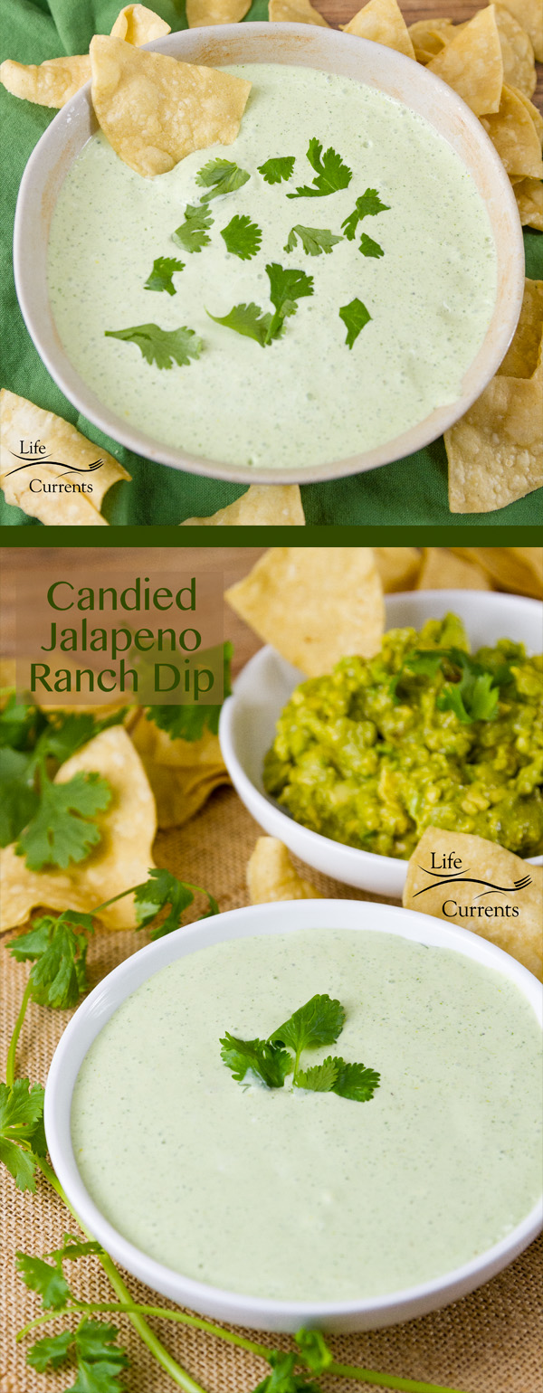 Candied Jalapeno Ranch Dip -- A slightly addictive and deliciously sweet-heat snack that's perfect football food!