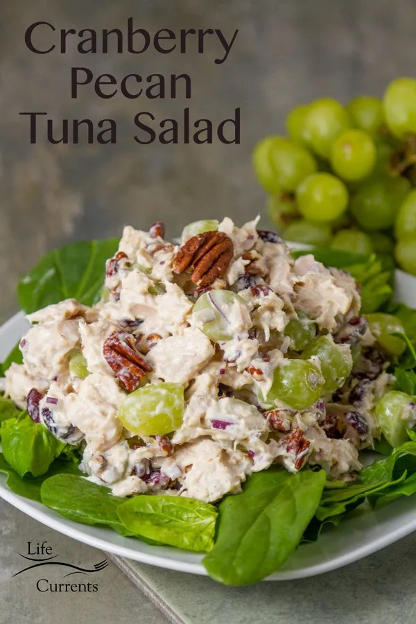 Cranberry Pecan Tuna Salad - Delicious Island Trollers albacore tuna, tart and sweet dried cranberries, crunchy toasted pecans, fresh fruity grapes. This salad comes together quickly and is so delicious!