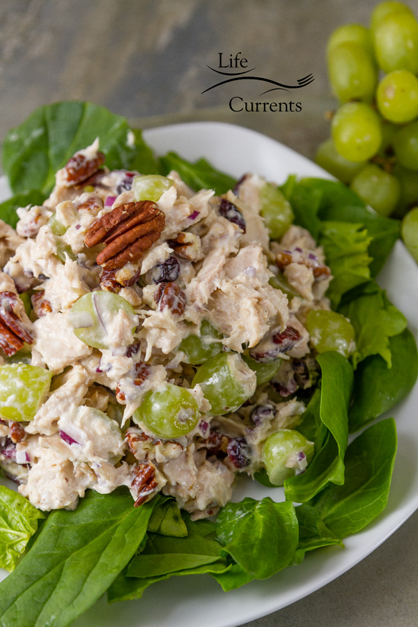 Cranberry Pecan Tuna Salad Recipe - easy to make and a great balance of flavors