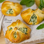 Spinach Mushroom Crescents – There's enough filling in the recipe that you can actually do both. Maybe make the some smaller ones for the kids, and bigger ones for the adults.
