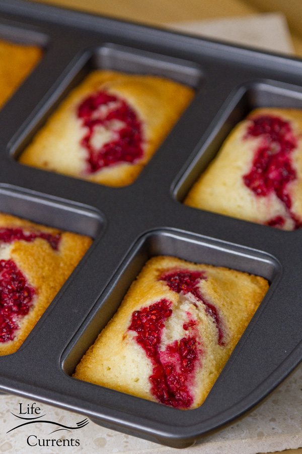 French Almond Financiers Cakes with Roasted Raspberry Swirl in a traditional pan