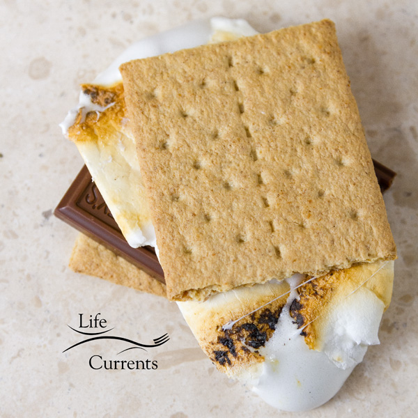 the classic s'more with graham crackers, Hershey's milk chocolate, and toasted marshmallow on a white background
