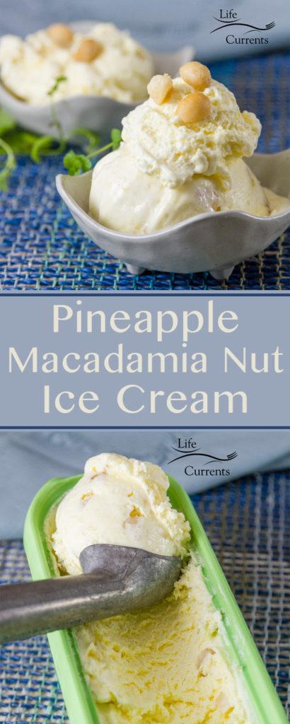 Pineapple Macadamia Nut Ice Cream Recipe long pin for Pinterest