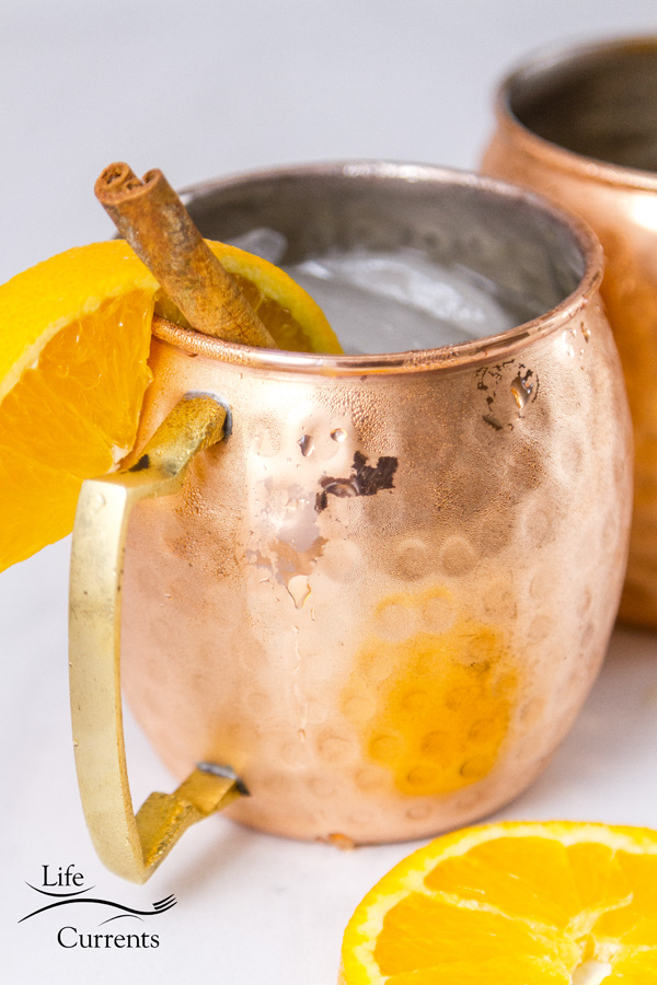 a close up of the copper mug with ornage slices and cinnamon sticks on a white background