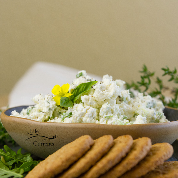 Feta Cheese spread in a ceramic bowl served with crackers and herbs, square crop