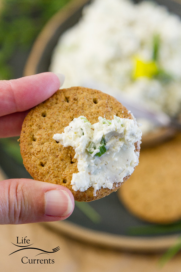 cheese spread on a whole wheat cracker