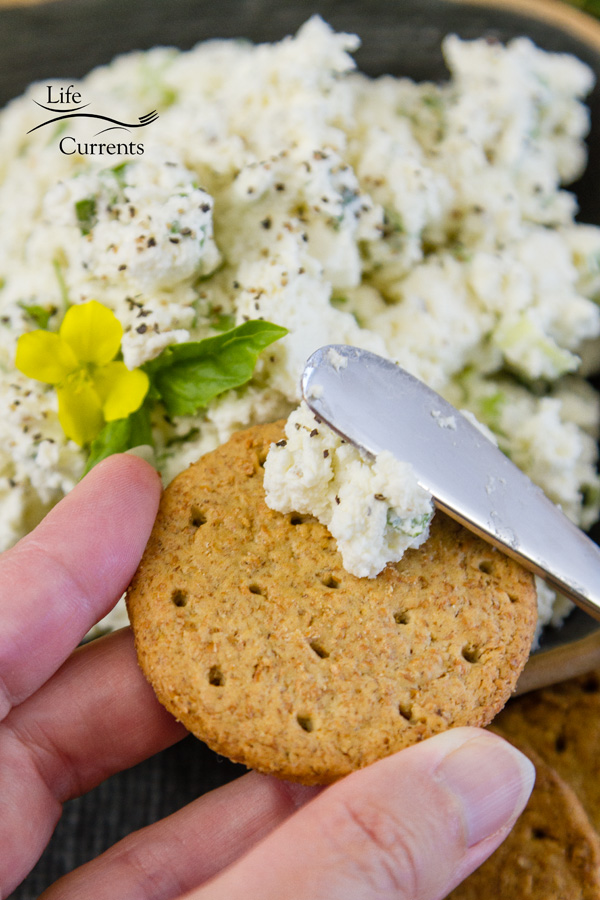 spreading feta cheese spread on a cracker with a knife
