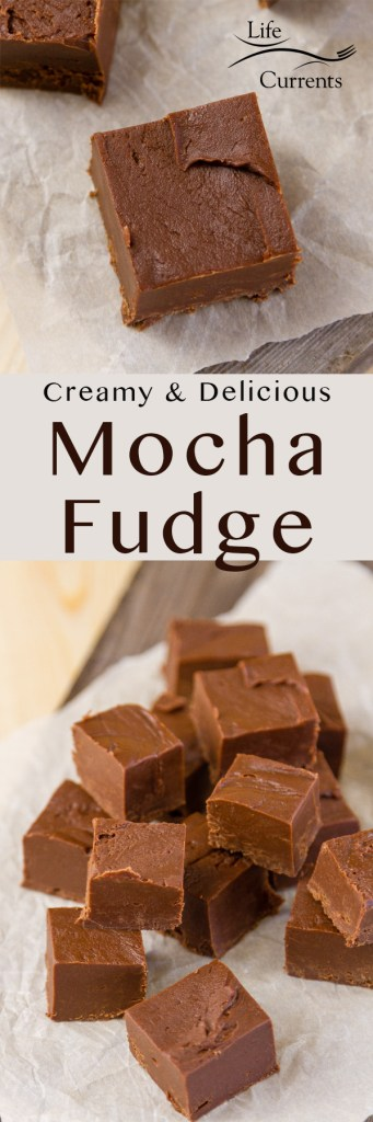 Long pin for Pinterest with two images of Mocha Fudge