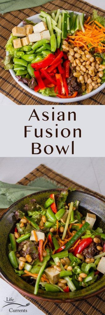Long pin for Pinterest with two images of Asian Fusion Bowl and the title