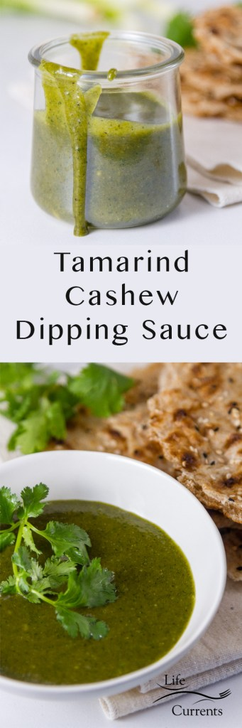 Tamarind Cashew Dipping Sauce long pin for pinterest with two images and the title
