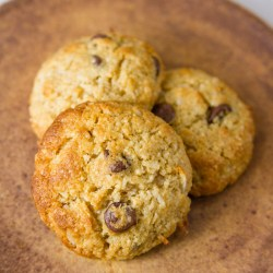 three Coconut Almond Meal Cookies with Chocolate Chips on a brown plate