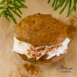 One sandwich cookie on parchment paper with green tree boughs