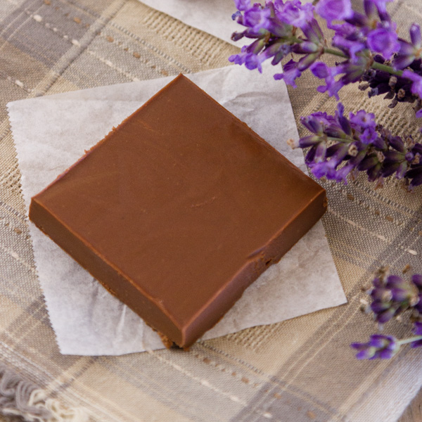 square crop of one piece of Two Ingredient Peanut Butter Chocolate Fudge