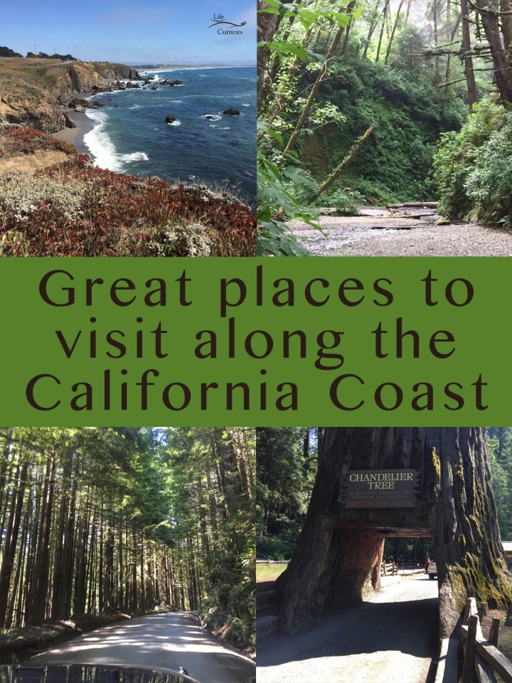 collage of 4 images of things to do in California. Top left: a coastal vista, top right: Fern Canyon, bottom left: redwood trees over the hood of a car, bottom Left: the drive thru tree. Title in middle: Great places to visit along the California Coast