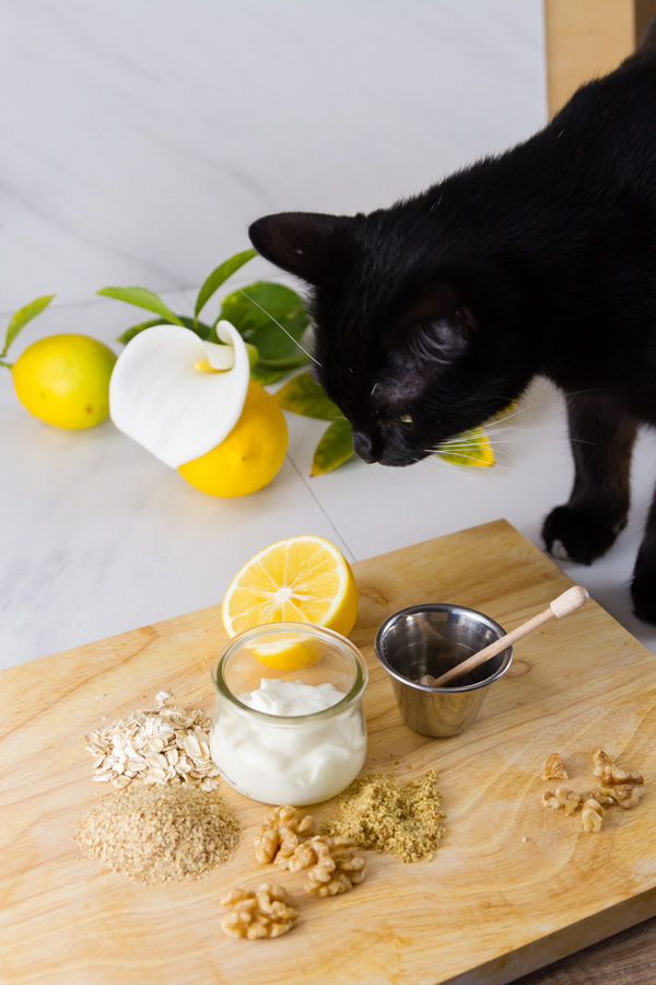 black cat investigating some food ingredients on a wooden cutting board