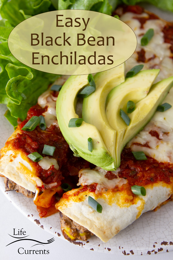 looking down on enchiladas on a plate topped with avocado and green onions