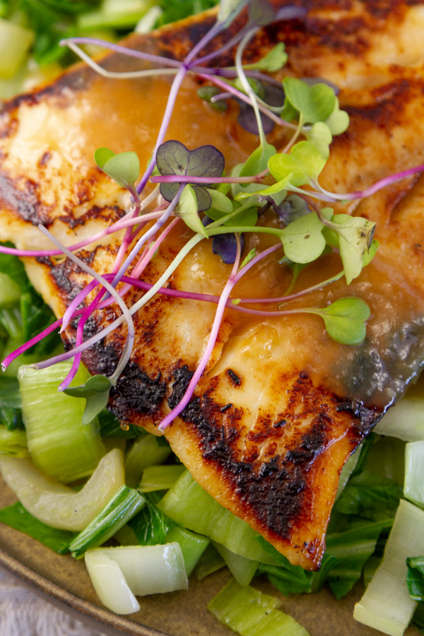 close up on cooked miso marinated black cod with bok choy, sprouts, and miso sauce.