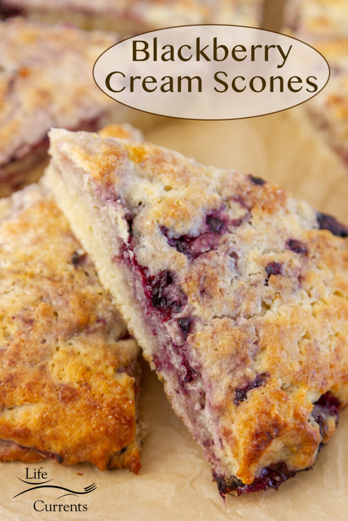 a scone laying over another scone, title on image: Blackberry Cream Scones.