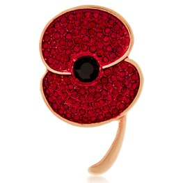 Poppy Brooch £15 M&S (£4.50 donation to Royal British Legion)