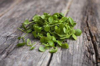 Massively underrated, watercress is one of the original superfoods as it has more iron than spinach, more calcium than milk, and more vitamin C than oranges. Make sure you include it in your salads and juices from now on.