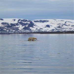 Living and working in the Arctic
