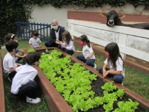 Matrículas para Educação Infantil voltam a crescer