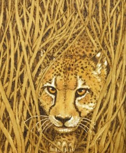 Cheetah Bechtold