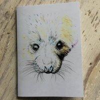 Seal Pup Pocket Notebook
