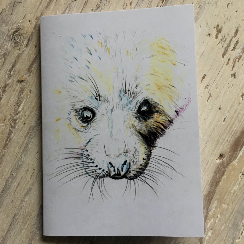Seal Pup Pocket Notebook