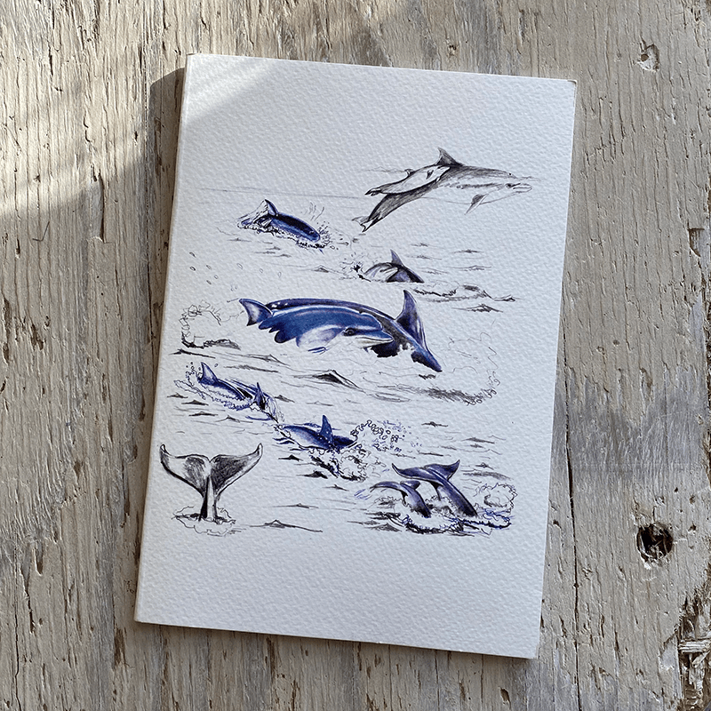 bottlenose dolphin a5 notebook