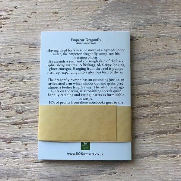 dragonfly emergence pocket notebook