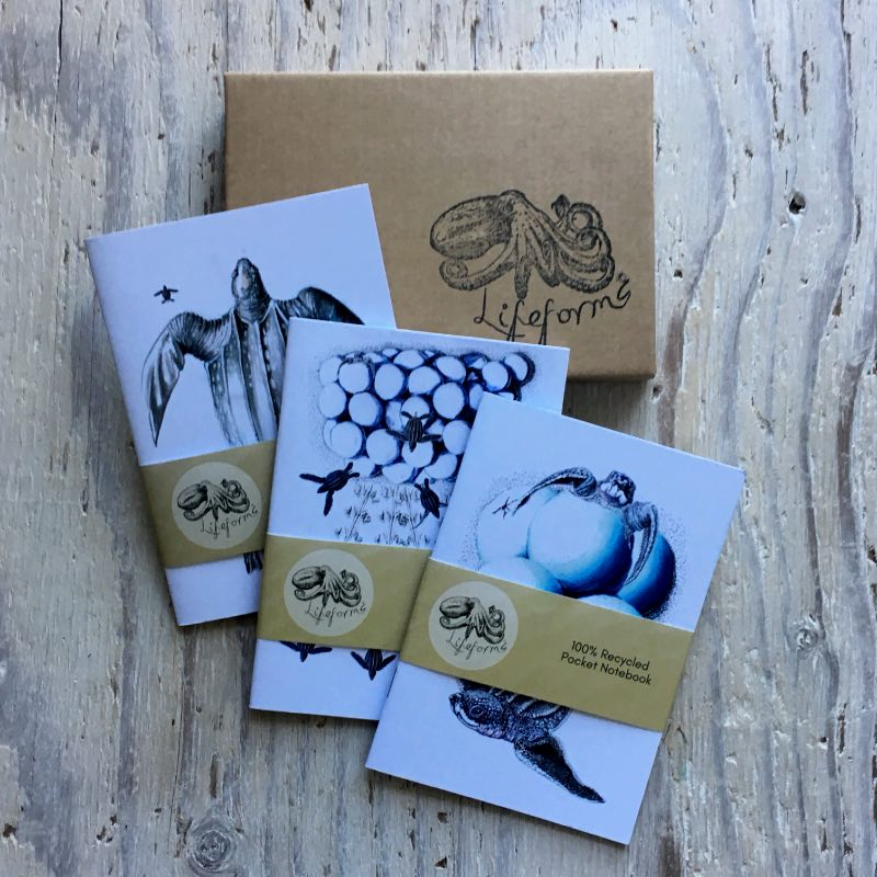 Leatherback Turtles Pocket Notebook Set