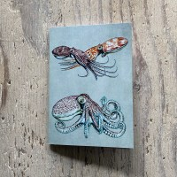 curled octopus pocket notebook