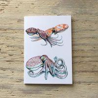 octopus pocket notebook