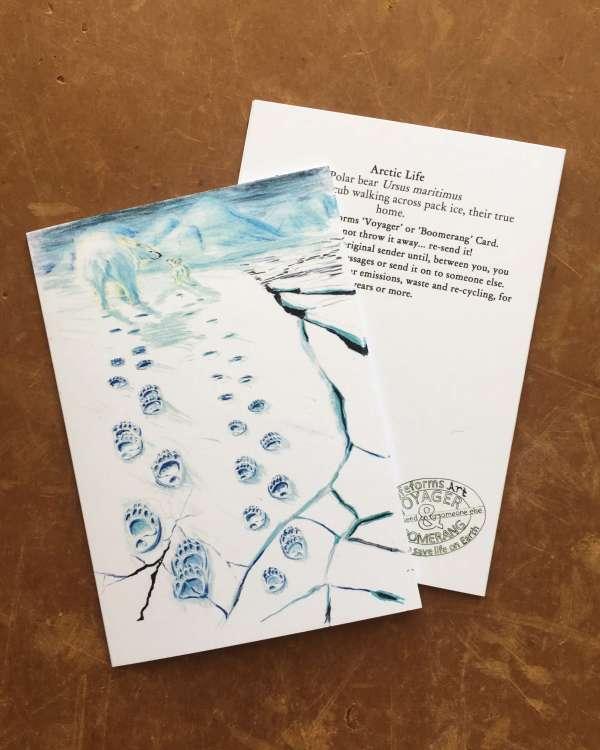 Arctic life art cards