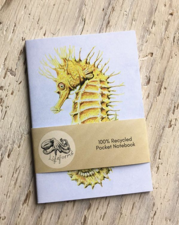 Seahorse pocket notebook