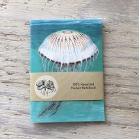 compass jellyfish pocket notebook