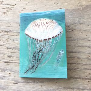 compass jellyfish pocket notebook