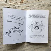 shore crab colouring book